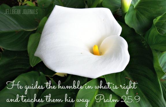 psalms 25