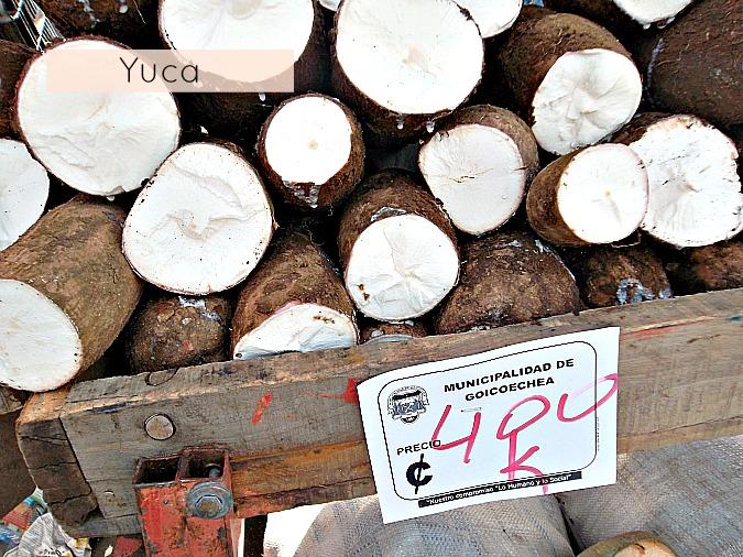 farmers-market-costa-rica-yuca