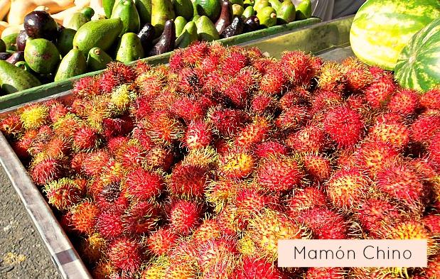 farmers-market-costa-rica