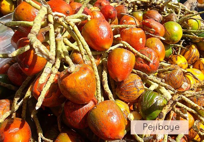 pejibaye-costa-rica