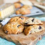 Cranberry Walnut Muffin Tops   jellibeanjournals.com